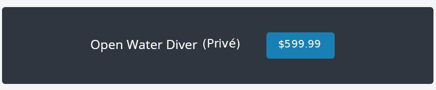 prix cours de plongée privé